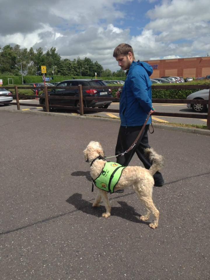 dog-trainer-photo-3