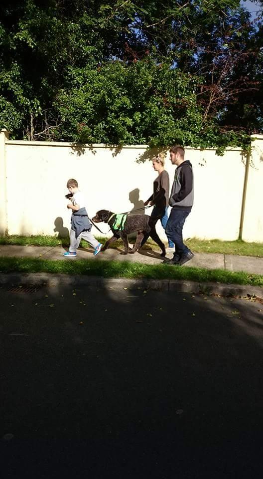 Παιδιά με σκύλους βοηθούς
