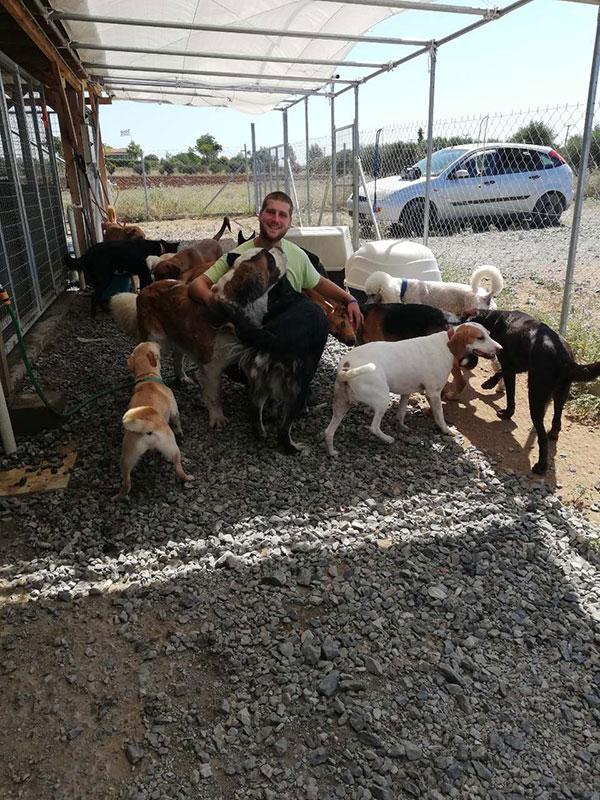 Σκύλοι Βοηθοί με εκπαιδευτή σκύλων