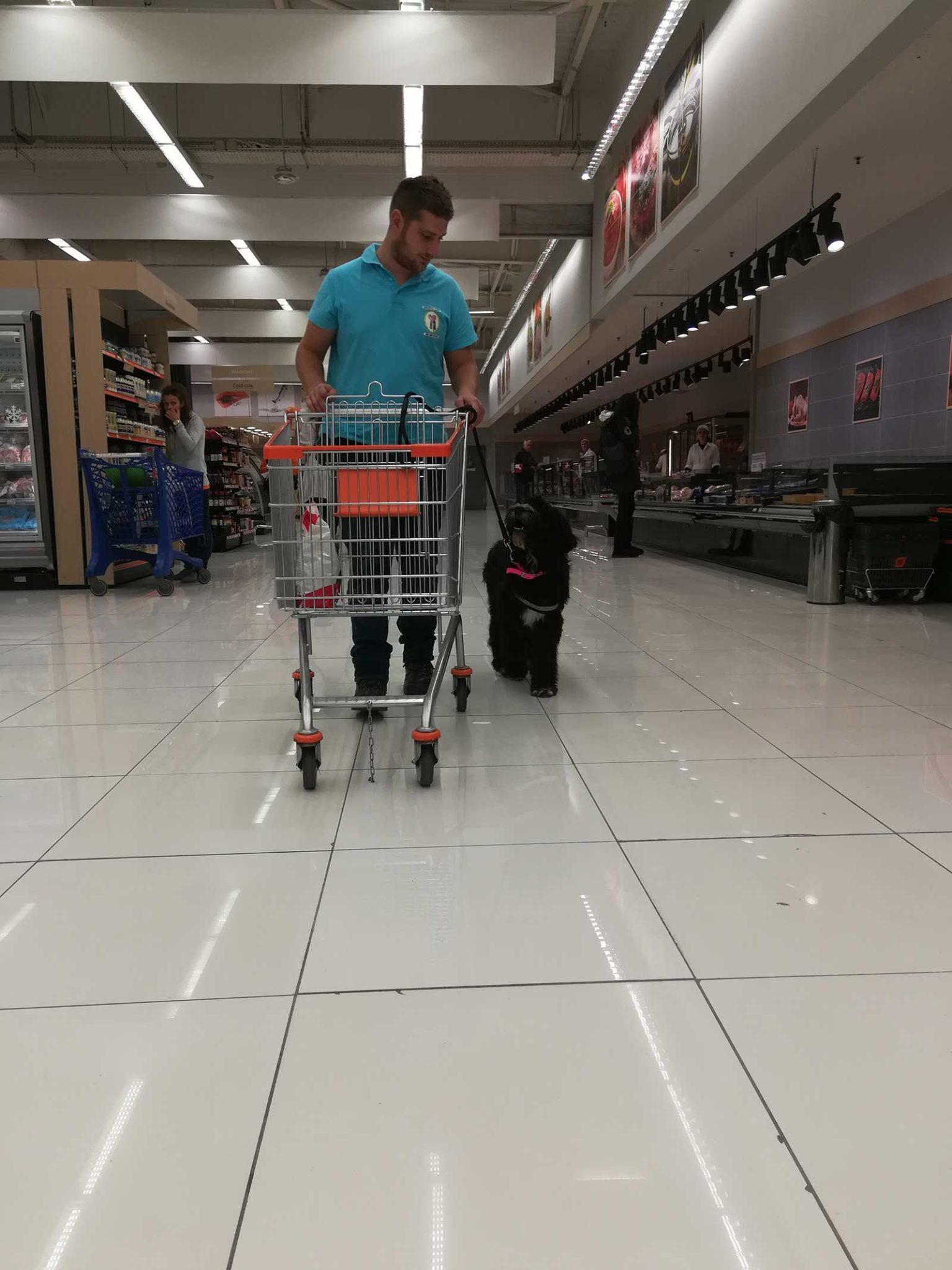 Σκύλος Βοηθός με εκπαιδευτή στο super market